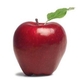 עץ תפוח- עצי פרי | הדר נוי משתלות