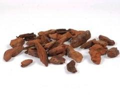 קליפות אורן - עצי נוי | הדר נוי משתלות