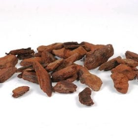 קליפות אורן - עצי נוי   הדר נוי משתלות