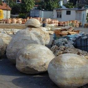 אבן טבעית בולבוס - עצי נוי | הדר נוי משתלות