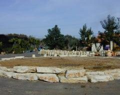 סלעים לגינה - עצי נוי | הדר נוי משתלות