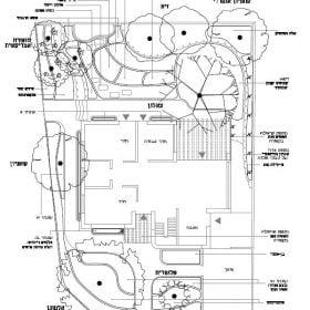 עקרונות התכנון - עצי נוי | הדר נוי משתלות