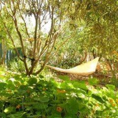 בוסתן – גן עצי פרי וירק